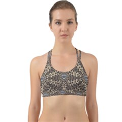 I Am Big Cat With Sweet Catpaws Decorative Back Web Sports Bra