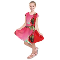 Humidity Kids  Short Sleeve Dress