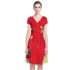 Humidity 9 Short Sleeve Front Wrap Dress