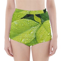 Leaf Green Foliage Green Leaves High Waisted Bikini Bottoms