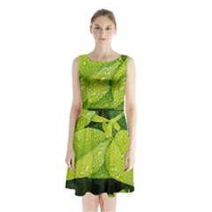 Leaf Green Foliage Green Leaves Sleeveless Waist Tie Chiffon Dress
