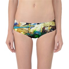 Catalina Island Not So Far 6 Classic Bikini Bottoms by bestdesignintheworld