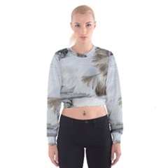 Feather Brown Gray White Natural Photography Elegant Cropped Sweatshirt