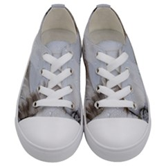 Feather Brown Gray White Natural Photography Elegant Kids  Low Top Canvas Sneakers