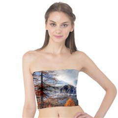 Dolomites Mountains Italy Alpine Tube Top