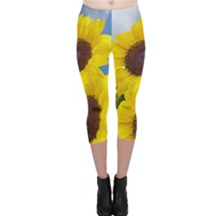 Sunflower Floral Yellow Blue Sky Flowers Photography Capri Leggings