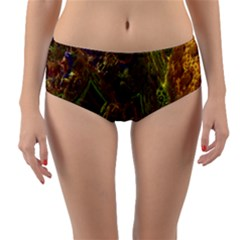 Fractal Virtual Abstract Reversible Mid Waist Bikini Bottoms