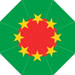 Flag Of Burkina Faso Folding Umbrellas