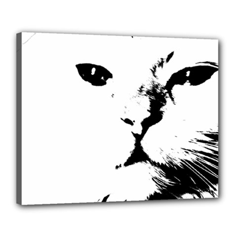 Cat Canvas 20  X 16
