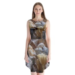 Seashells Sleeveless Chiffon Dress