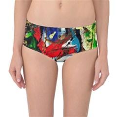 Catalina Island Not So Far 5 Mid Waist Bikini Bottoms