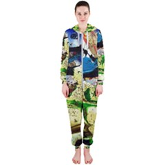 Catalina Island Not So Far 4 Hooded Jumpsuit (ladies)