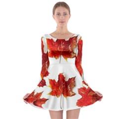Innovative Long Sleeve Skater Dress
