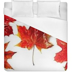 Innovative Duvet Cover (king Size) by GlobidaDesigns