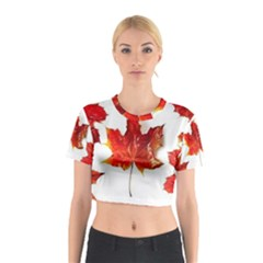 Innovative Cotton Crop Top