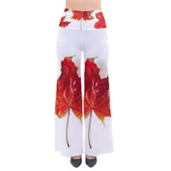 Innovative So Vintage Palazzo Pants