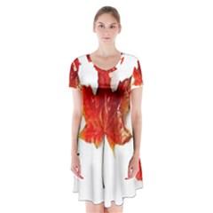 Innovative Short Sleeve V Neck Flare Dress