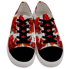 Innovative Men s Low Top Canvas Sneakers