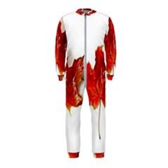 Innovative Onepiece Jumpsuit (kids)