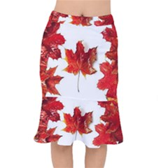 Innovative Mermaid Skirt