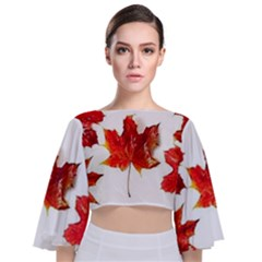 Innovative Tie Back Butterfly Sleeve Chiffon Top