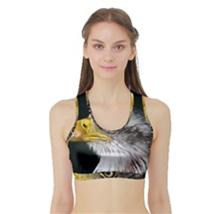 Bald Eagle Portrait  Sports Bra With Border