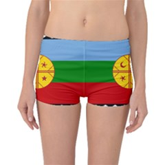 Flag Of The Mapuche People Boyleg Bikini Bottoms