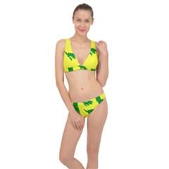 Flag Of Culebra Classic Banded Bikini Set