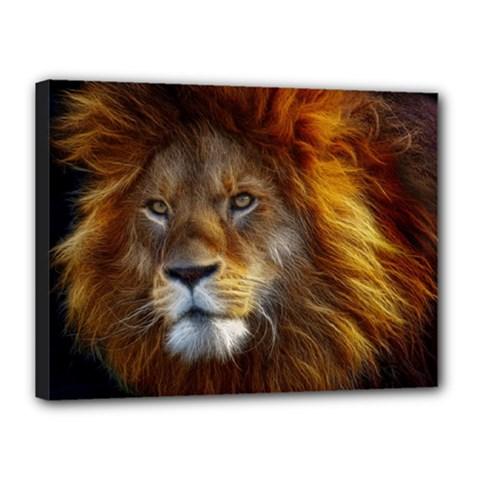 Fractalius Big Cat Animal Canvas 16  X 12