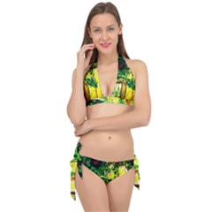 Old Tree And House With An Arch 2 Tie It Up Bikini Set