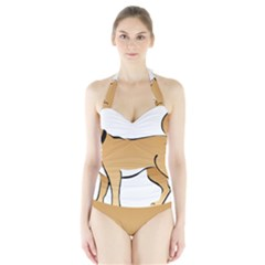 Dog Brown Pet Animal Tail Eskimo Halter Swimsuit