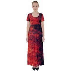Reflections At Night High Waist Short Sleeve Maxi Dress