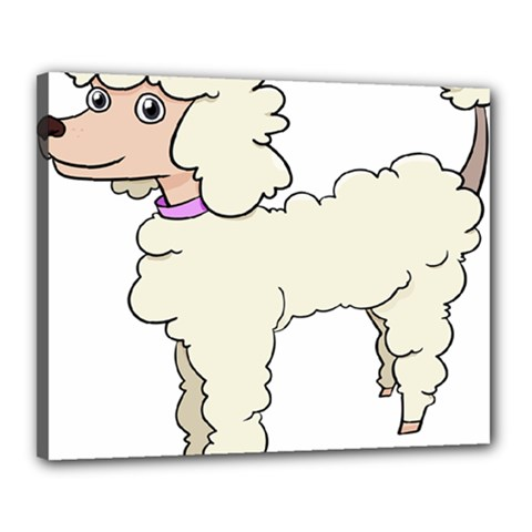 Poodle Dog Breed Cute Adorable Canvas 20  X 16