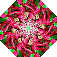 Flamingo   Child Of Dawn 5 Hook Handle Umbrellas (medium) by bestdesignintheworld