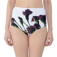 Purple Carnations From A Distance Classic High Waist Bikini Bottoms by bloomingvinedesign