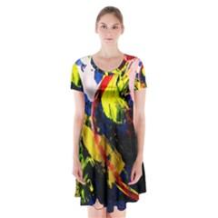 Global Warming 2 Short Sleeve V Neck Flare Dress