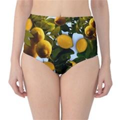 Lemon Tree Pattern Classic High Waist Bikini Bottoms