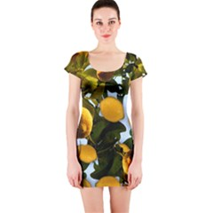 Lemon Tree Pattern Short Sleeve Bodycon Dress