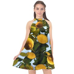 Lemon Tree Pattern Halter Neckline Chiffon Dress