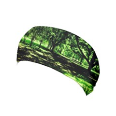 Hot Day In Dallas 26 Yoga Headband