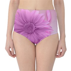 Flower Design Romantic Classic High Waist Bikini Bottoms