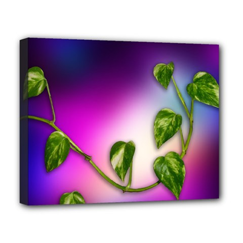 Leaves Green Leaves Background Deluxe Canvas 20  X 16