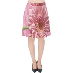 Background Texture Flower Petals Velvet High Waist Skirt by Sapixe