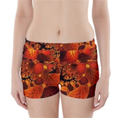 Leaf Autumn Nature Background Boyleg Bikini Wrap Bottoms