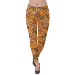 Leaves Motif Pattern Photo 2 Velvet Leggings