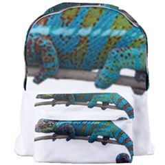 Reptile Lizard Animal Isolated Giant Full Print Backpack by Sapixe
