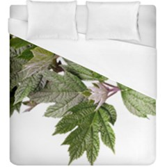 Leaves Plant Branch Nature Foliage Duvet Cover (king Size) by Sapixe
