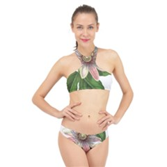 Passion Flower Flower Plant Blossom High Neck Bikini Set by Sapixe