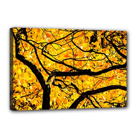 Golden Vein Canvas 18  X 12  by FunnyCow