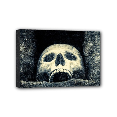 Smiling Skull Mini Canvas 6  X 4  by FunnyCow